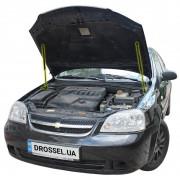 Амортизаторы капота (газовые упоры капота) Euro-Upor EU-CH-LAC-01-2 для Chevrolet Lacetti (2004-2013) 2шт
