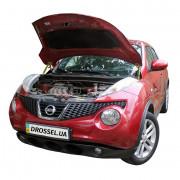 Амортизаторы капота (газовые упоры капота) Euro-Upor EU-NI-JUK-01-2 для Nissan Juke (2010-2019) 2шт