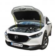 Амортизаторы капота (газовые упоры капота) Euro-Upor EU-MA-X30-01-2 для Mazda CX-30 (2019+) 2шт