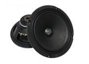 Акустическая система FSD audio Master 200 N (среднечастотник)