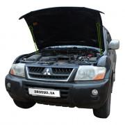 Амортизаторы капота (газовые упоры капота) Euro-Upor EU-MI-PWA-03-2 для Mitsubishi Pajero Wagon 3 (1999-2005) 2шт