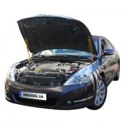 Амортизаторы капота (газовые упоры капота) Euro-Upor EU-NI-TEA-02-2 для Nissan Teana J32 (2008-2013) 2шт
