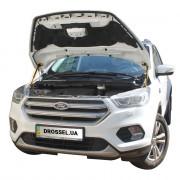 Амортизаторы капота (газовые упоры капота) Euro-Upor EU-FO-KUG-02-2 для Ford Kuga 2 (2012+) 2шт
