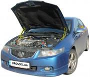 Амортизаторы капота (газовые упоры капота) Euro-Upor EU-HO-ACC-07-2 для Honda Accord 7 (2002-2007) 2шт
