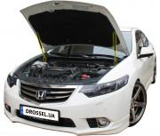 Амортизаторы капота (газовые упоры капота) Euro-Upor EU-HO-ACC-08-2 для Honda Accord 8 (2008-2012) 2шт