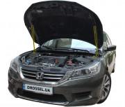 Амортизаторы капота (газовые упоры капота) Euro-Upor EU-HO-ACC-09-2 для Honda Accord 9 (2012-2015) 2шт