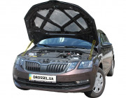 Амортизаторы капота (газовые упоры капота) Euro-Upor EU-SK-OСT-03-2 для Skoda Octavia A7 (2013+) 2шт