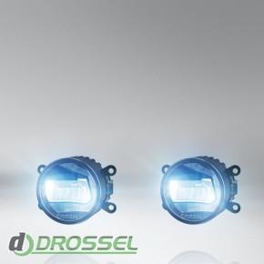 Osram LEDriving FOG (LED FOG 101)_5